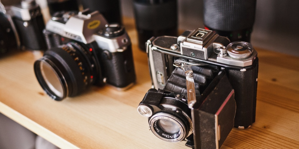 વિશ્વ ફોટોગ્રાફી દિવસ નિમિતે યાદગાર તસવીરો