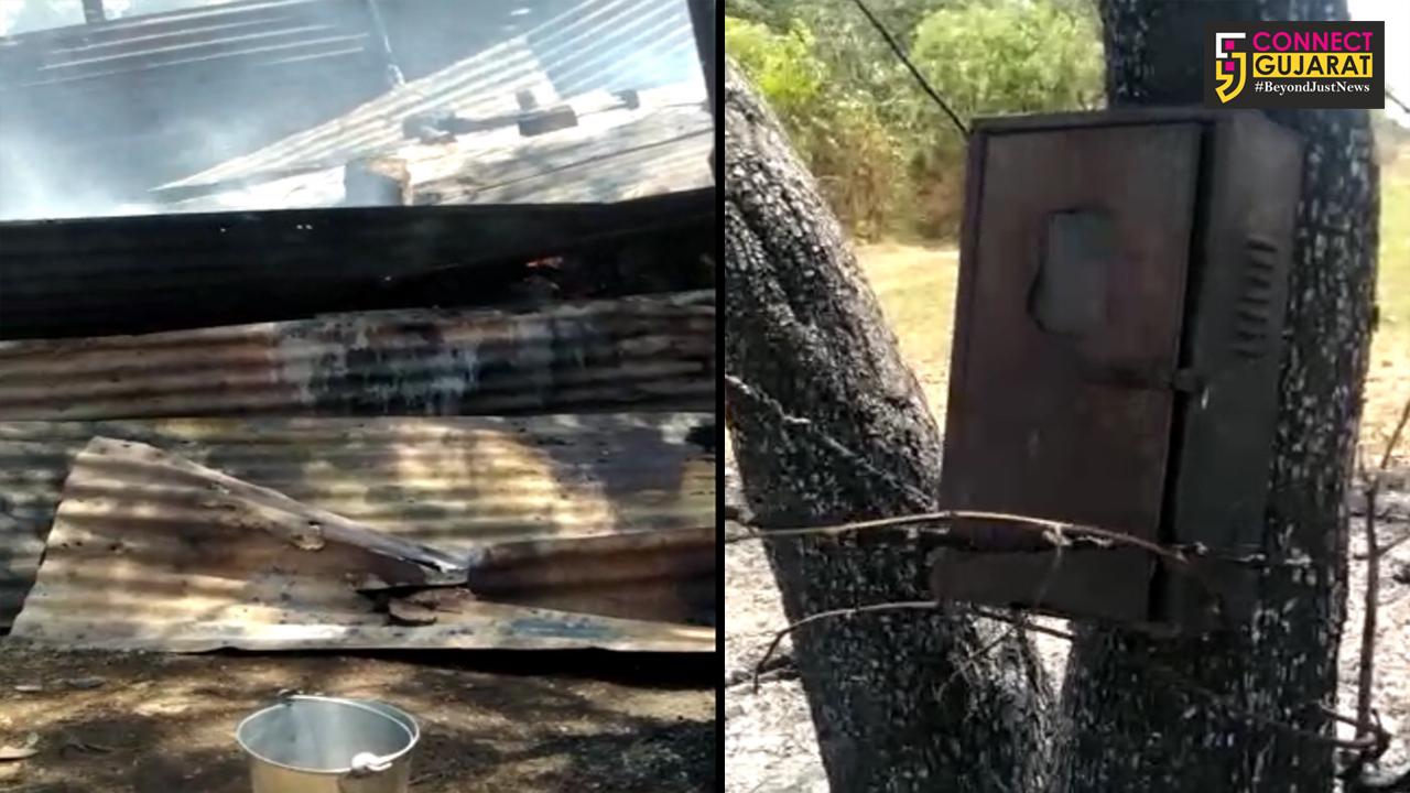 બાયડના ચોઈલા ગામે તબેલામાં આગ : બે ગાય બળીને ભડથું