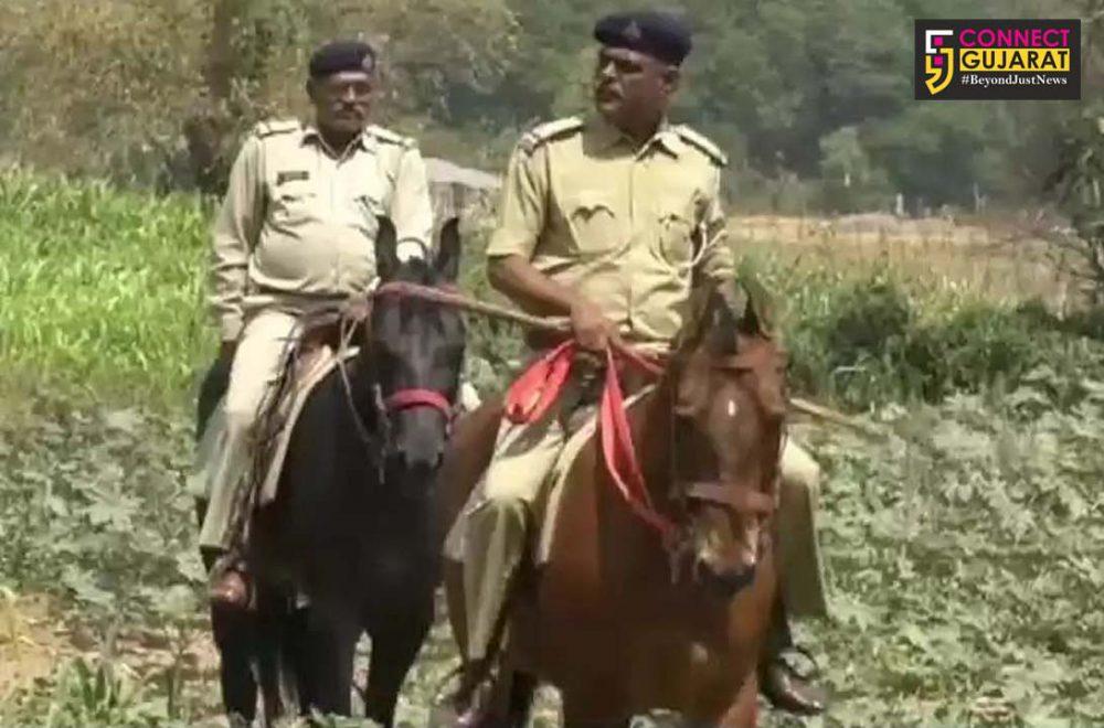 પંચમહાલ જિલ્લાના આ ગામોમાં ઘોડેસવાર પોલીસ કરે છે ખેતરોની રખેવાળી