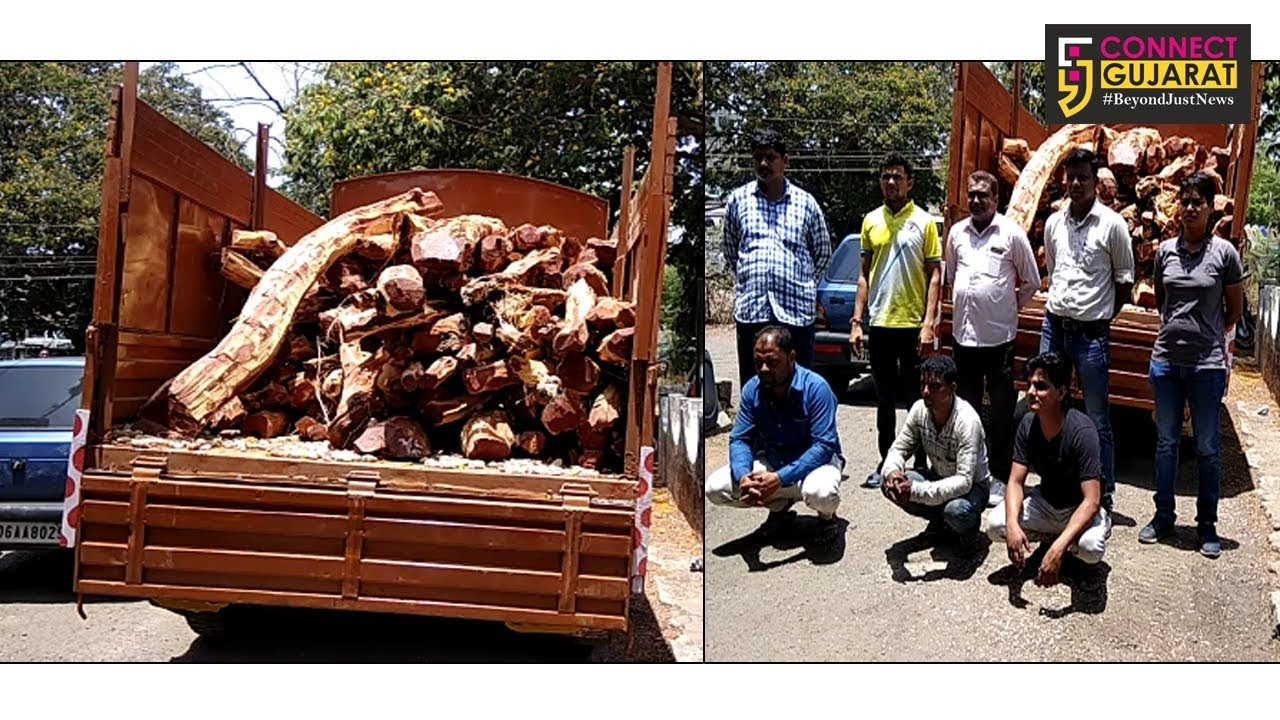 અંકલેશ્વર : ટોલ પ્લાઝા પાસે ખેરના લાકડાનો ગેરકાયદેસર લઇ જવાતો જથ્થો ઝડપાયો