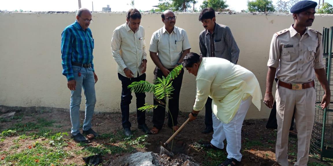 અંકલેશ્વર: રામકુંડ ખાતે કરાઇ વિશ્વ પર્યાવરણ દિવસની ઉજવણી