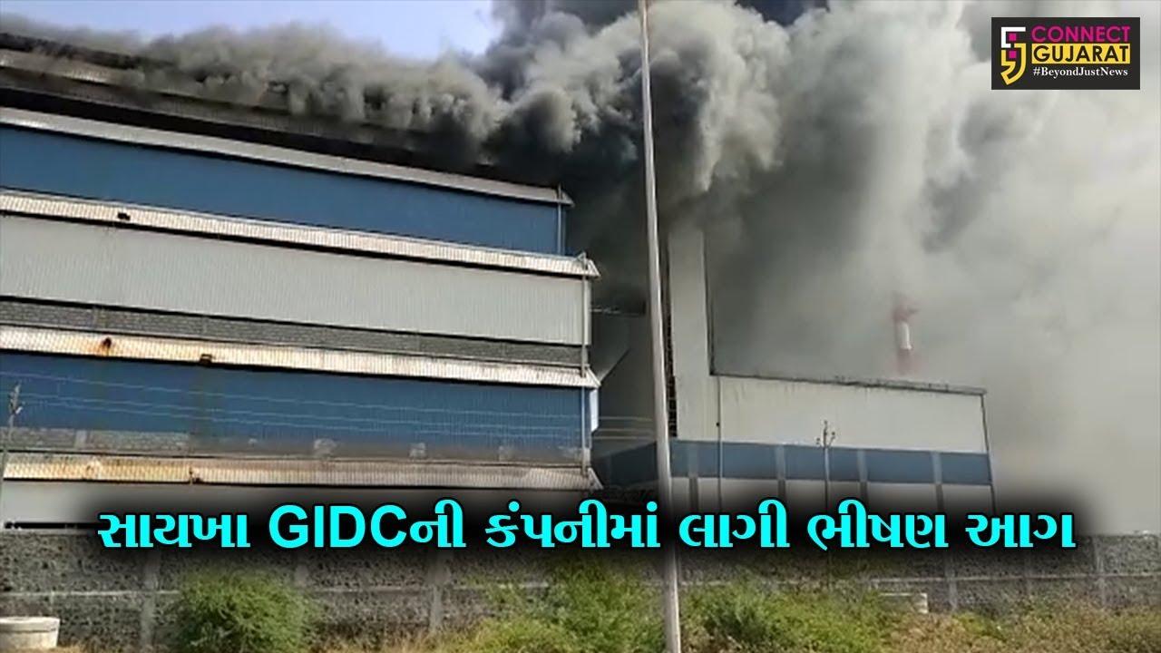 ભરૂચ : સાયખા GIDCની કંપનીમાં લાગી ભીષણ આગ, 7 કિ.મી. દૂર સુધી ધુમાડાના ગોટેગોટા જોવા મળ્યા