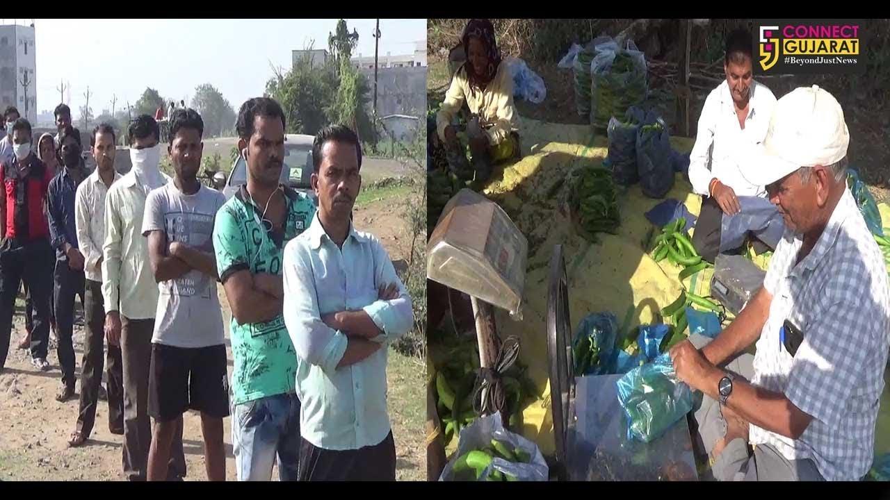 સુરત : પીપોદરા ગામે લોકોએ શિસ્ત જાળવીલગાવી કતાર, તો ખેડૂતે પણ લોકોને અડધા ભાવે શાકભાજી આપી